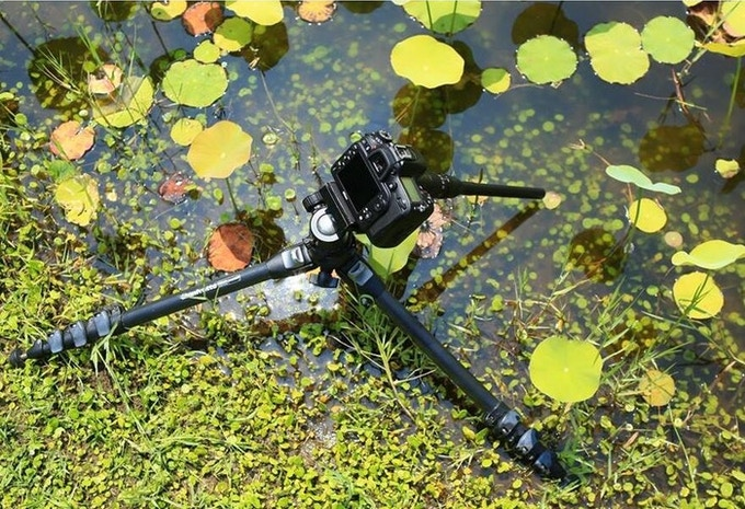 Shooting in a pond