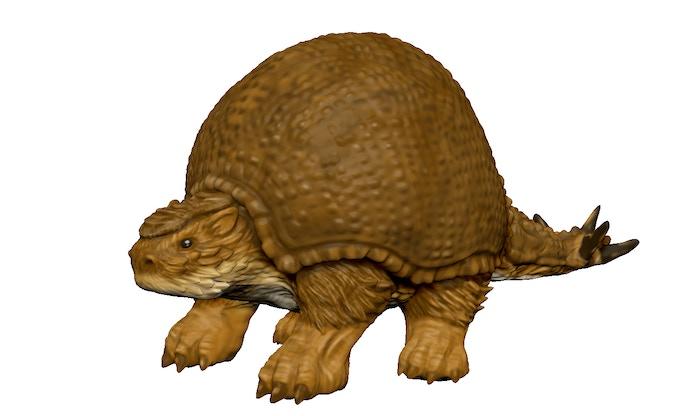 Glyptodon 3Dmodel