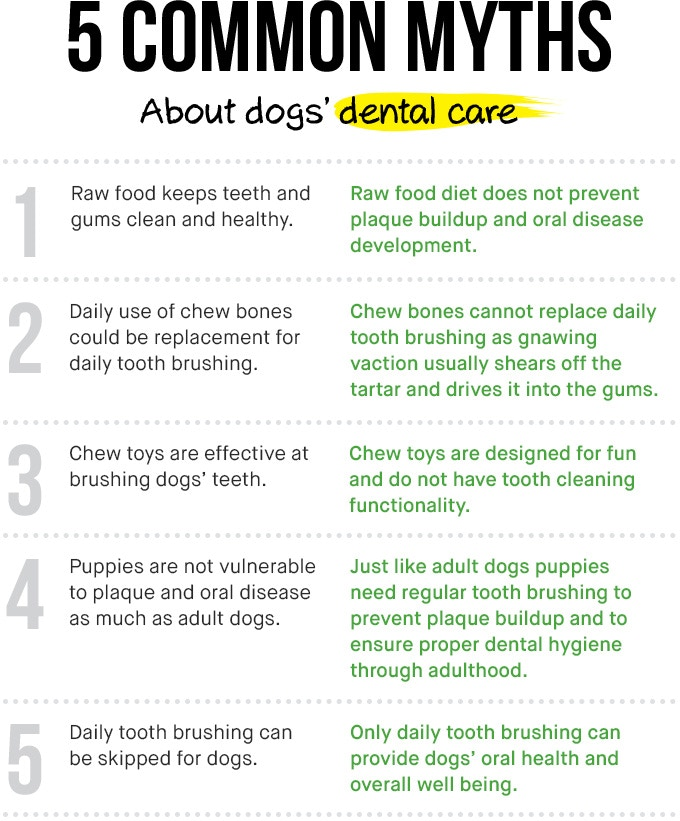 Bristly - World's Most Effective Toothbrush for Dogs by