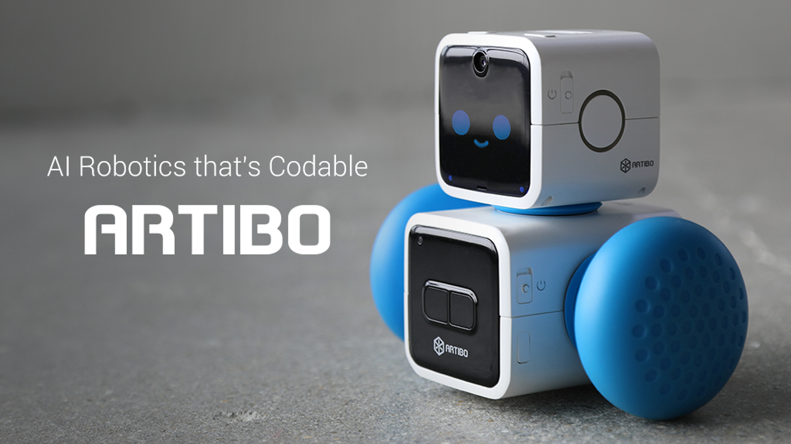 With a compact design and a variety of features & accessories, Artibo is an assistant, friend and entertainer all in one robot.