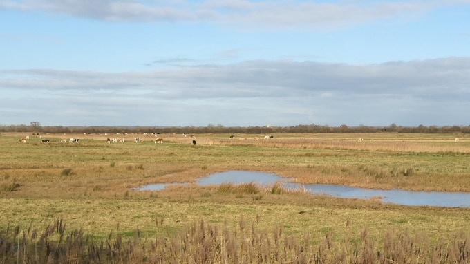 Otmoor - no roads and no houses