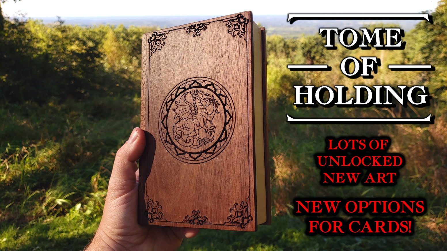 Intricate designs appear carved into the cover of this old tome.  What mysteries might lie inside?
