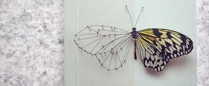 3D Butterfly Design
