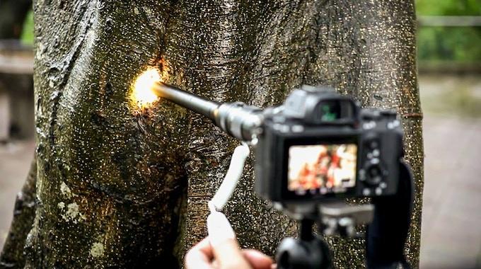 Revolutionize Macro Videography, Laowa 24mm f/14 Probe Lens
