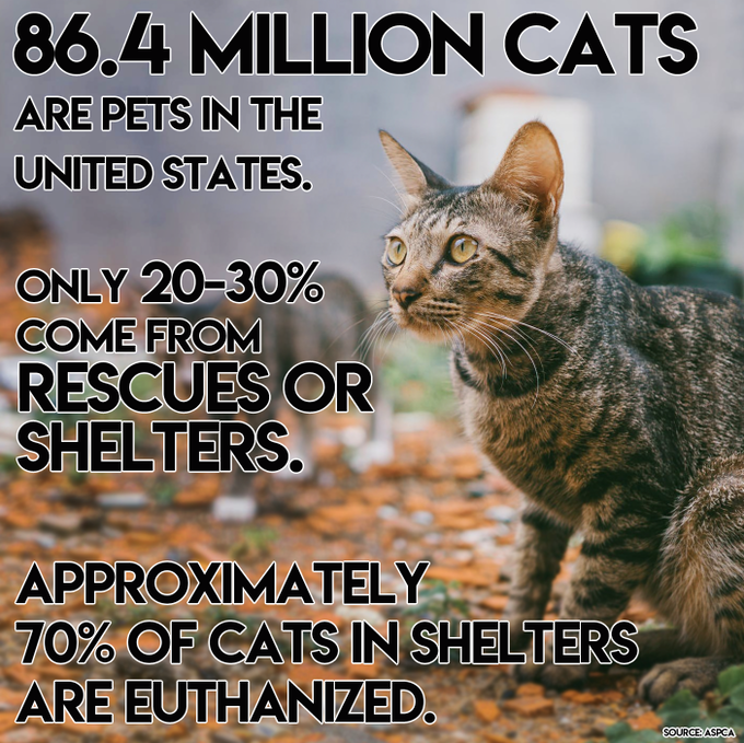 Source: ASPCA, 2011