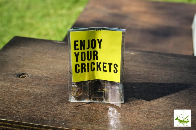 Dry cricket package