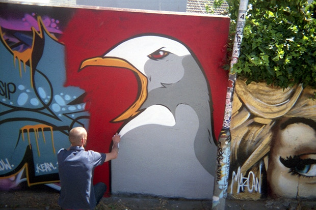 Painted Seagull by Bradley James