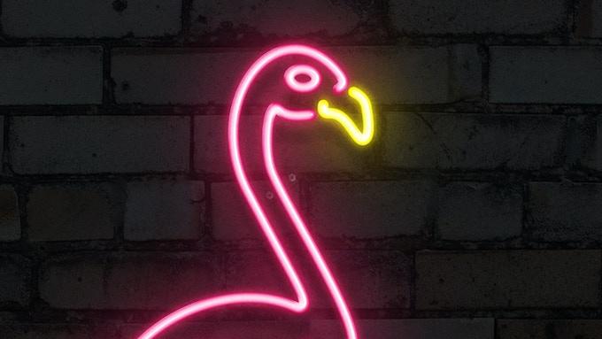 1989 – The Pink Flamingo