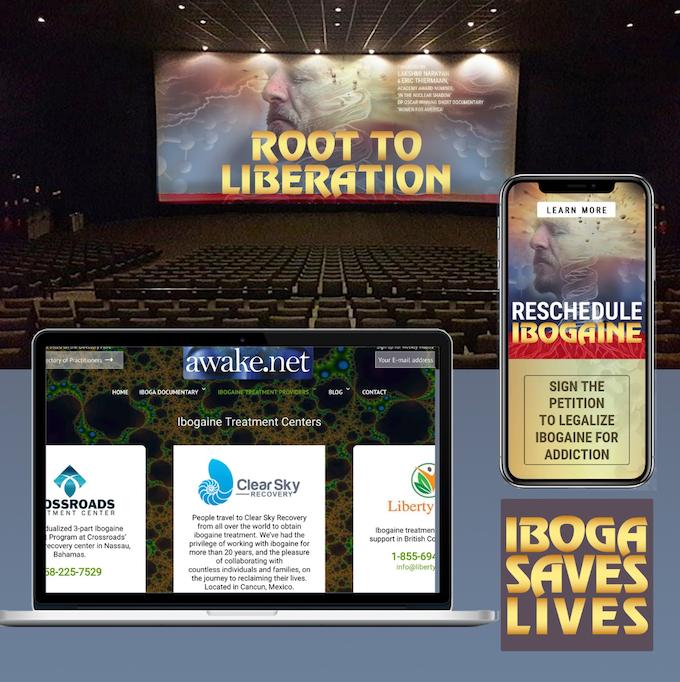 1. Documentary, 2. App, 3. Web Directory, 4. Awareness Campaign