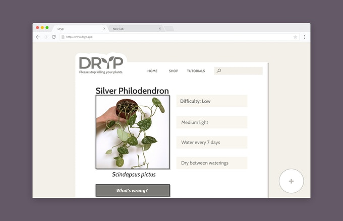 A mockup of what an online plant database might look like