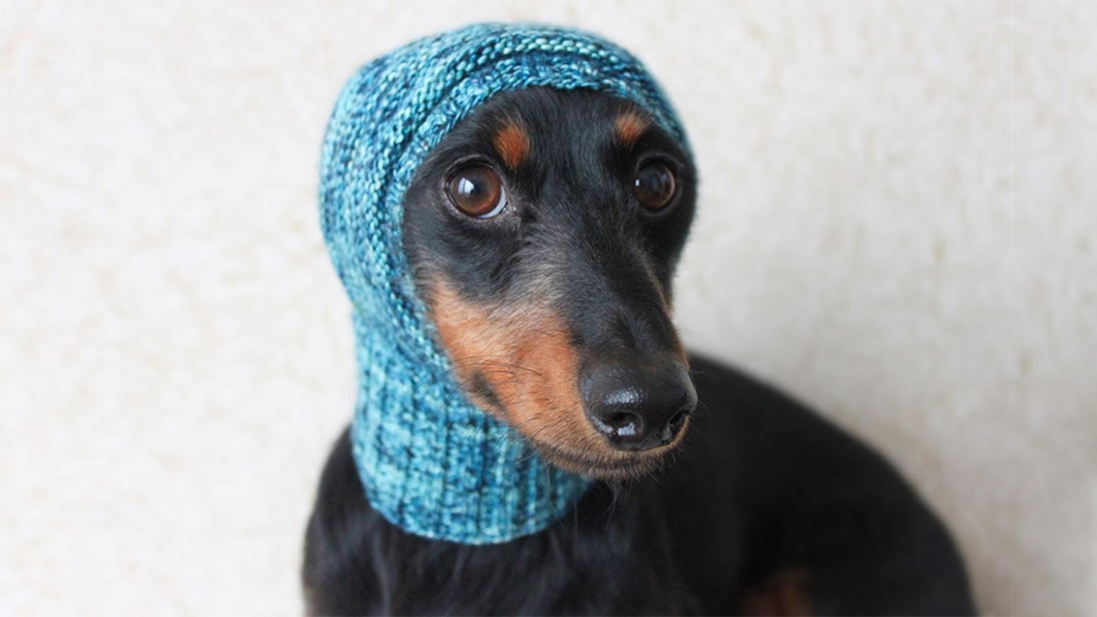 Knitting Pattern Series for Mini Dachshunds by Valya Boutenko