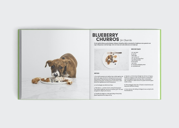 A mockup of what the book will look like, featuring Churro and his namesake dessert.