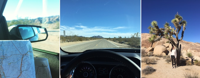 A map and the open road, Joshua Tree