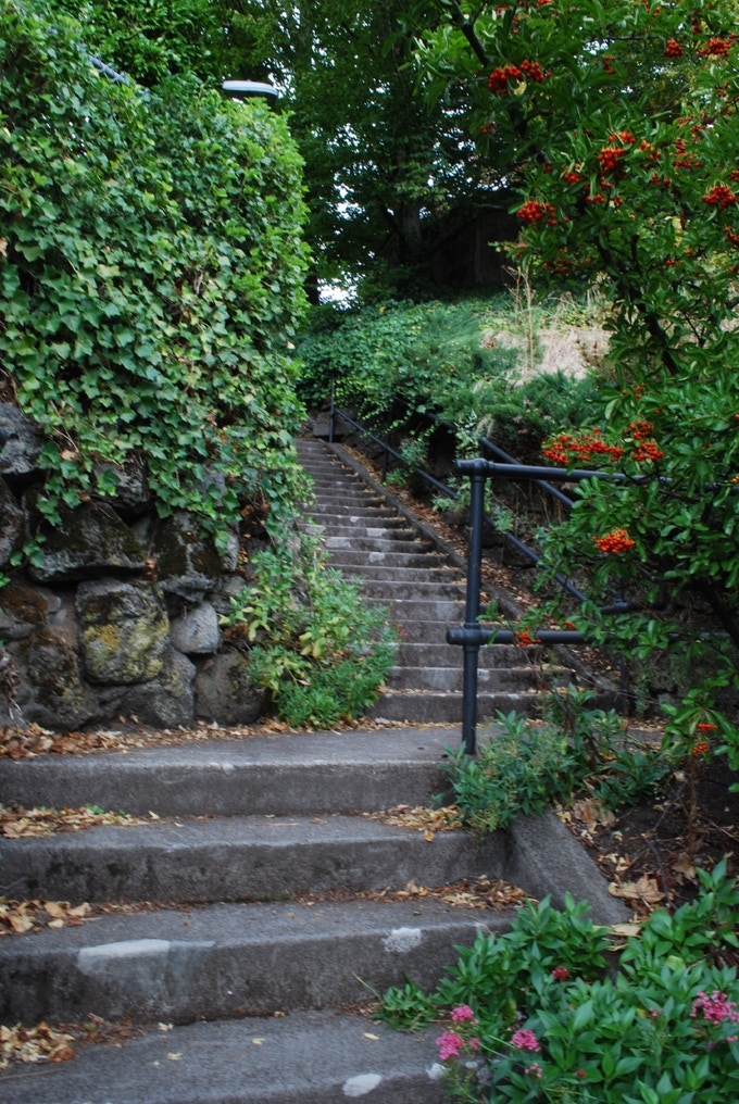 A public stairway climbing the Alameda Ridge