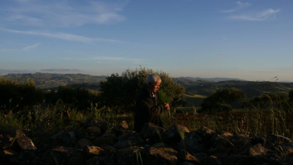 Amaro: the bitter taste in Sicilian food culture