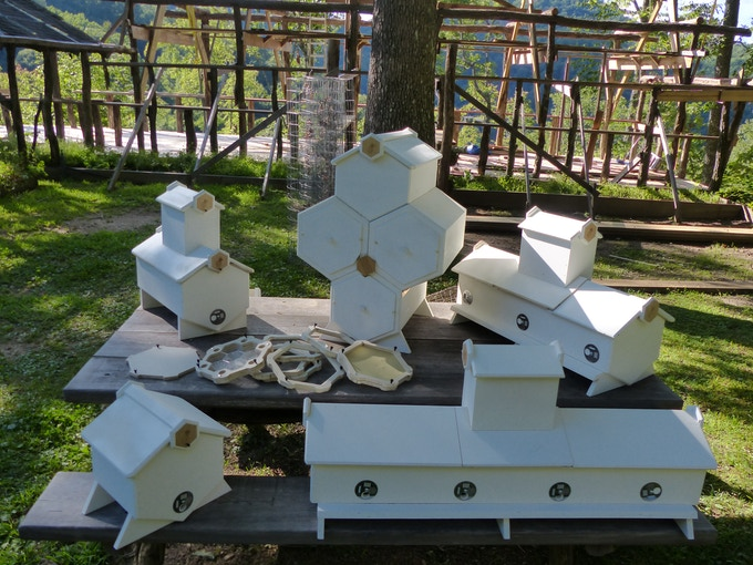 FIVE HONEYCOMB HIVE TYPES - STARTER-HIVES,  FOLD-HIVES,   FLEX-HIVES,  LONG-HIVES and NUC-BOXES