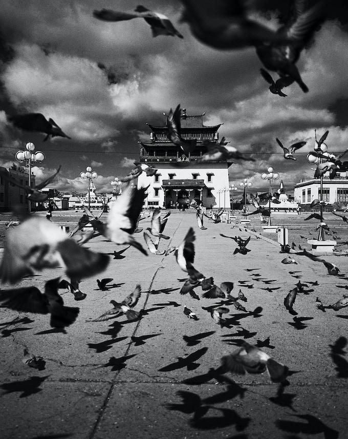 "Gandan Monastery (11x14"")"