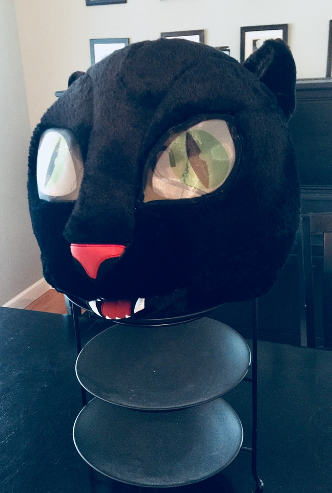 The Kitty Mask Used of the video