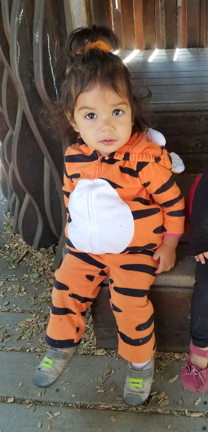 My little tiger