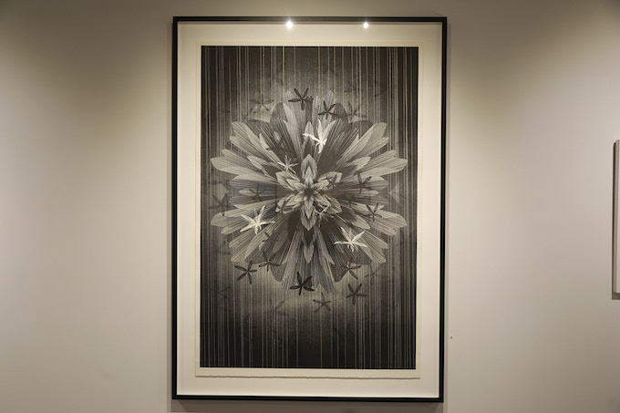 "KAI AND SUNNY (collaboration with Frank Black) ""STAR FLOWER"" (EDITION OF 5)"