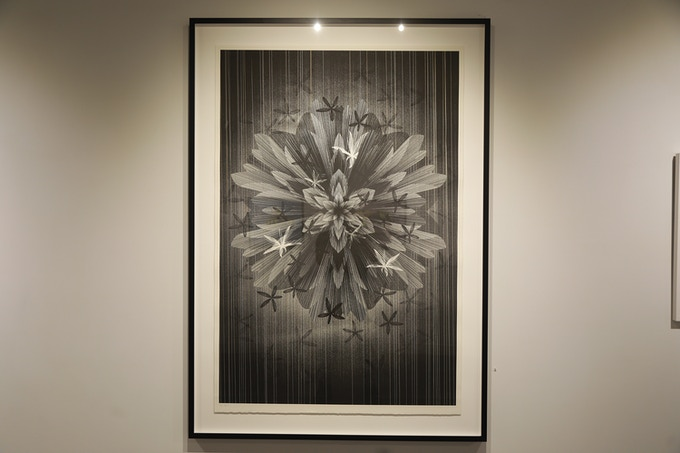 """KAI AND SUNNY (collaboration with Frank Black) """"STAR FLOWER"""" (EDITION OF 5)"""