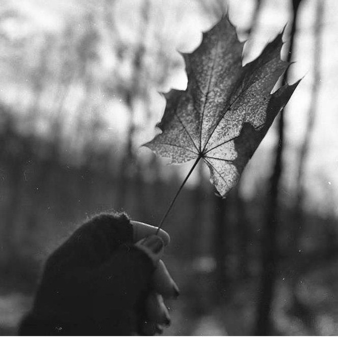 "Image 3 of 5 ""Leaf in Hand"" 8x8 gelatin silver print"