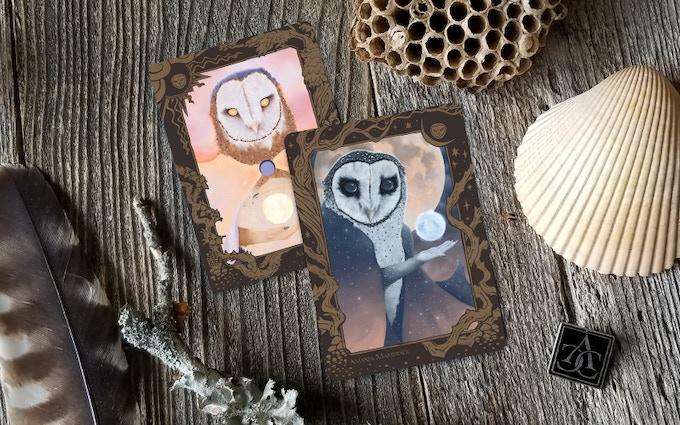Owl Pair by Amanda Makepeace
