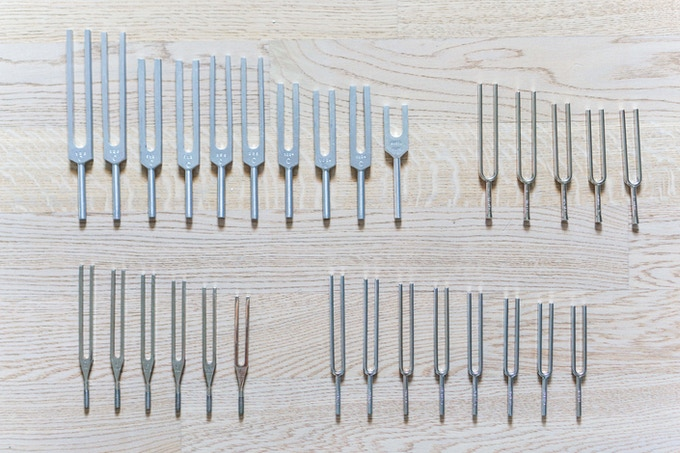 Bernier: tuning fork collection (29 available)