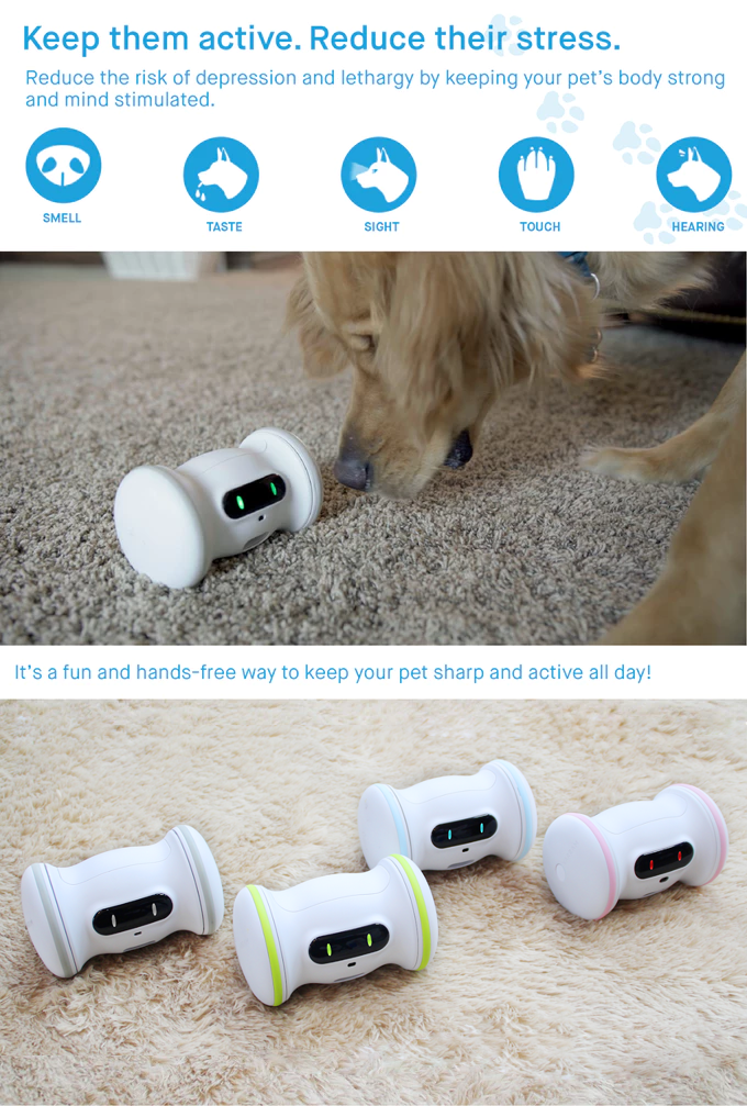 A Smart Robot For Your Pet - VARRAM by VARRAM — Kickstarter