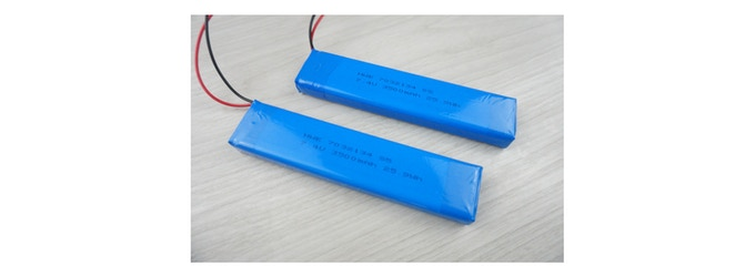 The batteries: each pack contains 2 cells