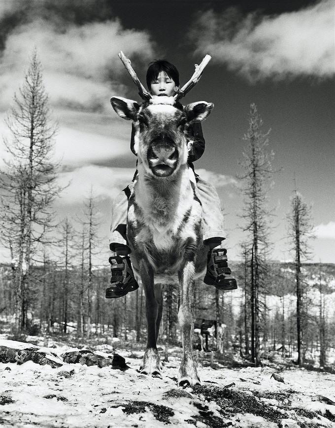 Tsaatan boy on his reindeer. Tsagaannuur, Northern Mongolia 2006.