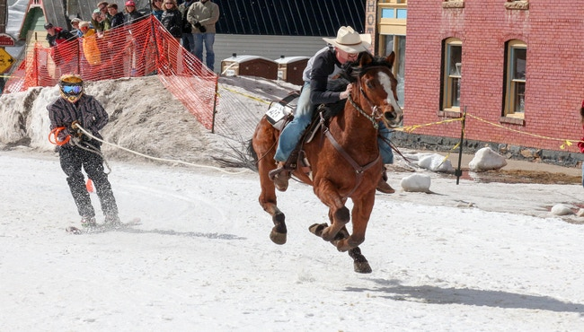 Would you go Skijoring? -A Norwegian activity of Skiing on snow while being pulled by a horse