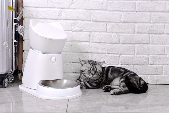 Q1 Smart Pet Feeder to Remotely Take Care of Your Pet