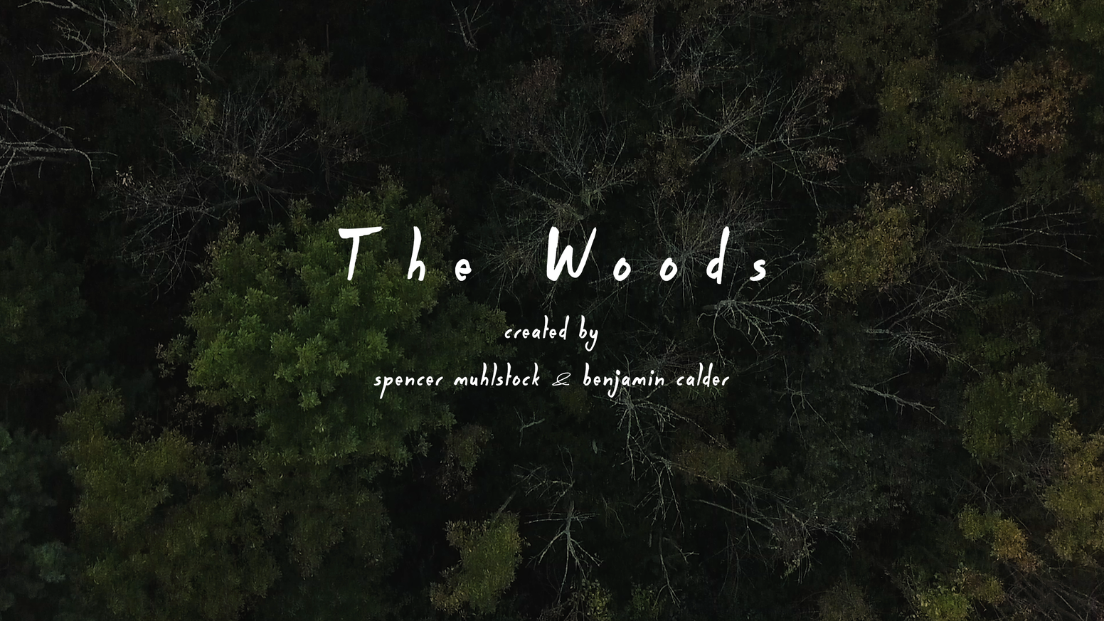 What happens when everything you know is ripped away?  The Woods is a proof-of-concept short film that will pitch a television series.
