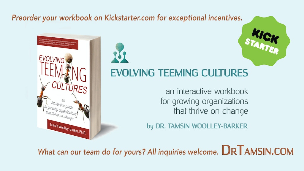 Evolving TEEMING Cultures: a Workbook project video thumbnail