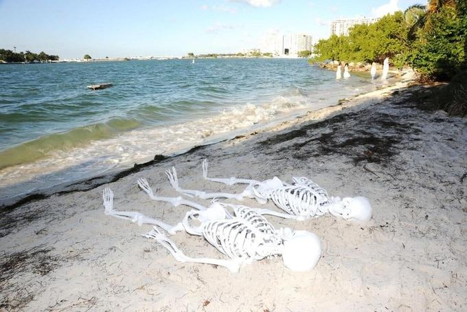 The Island Exhibition, Miami, 2014