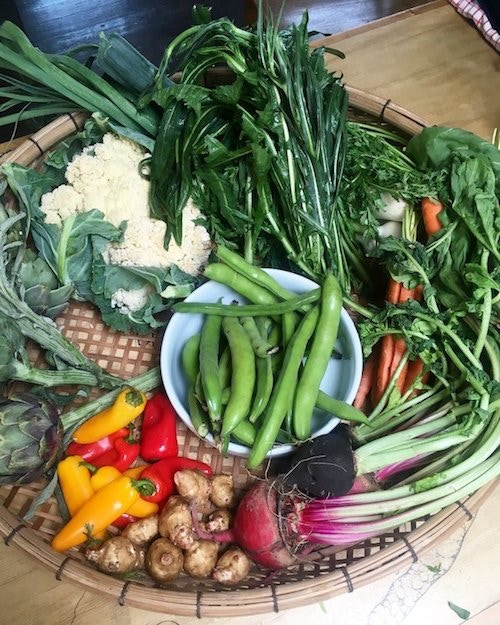 Farmers market haul for a cooking class I taught