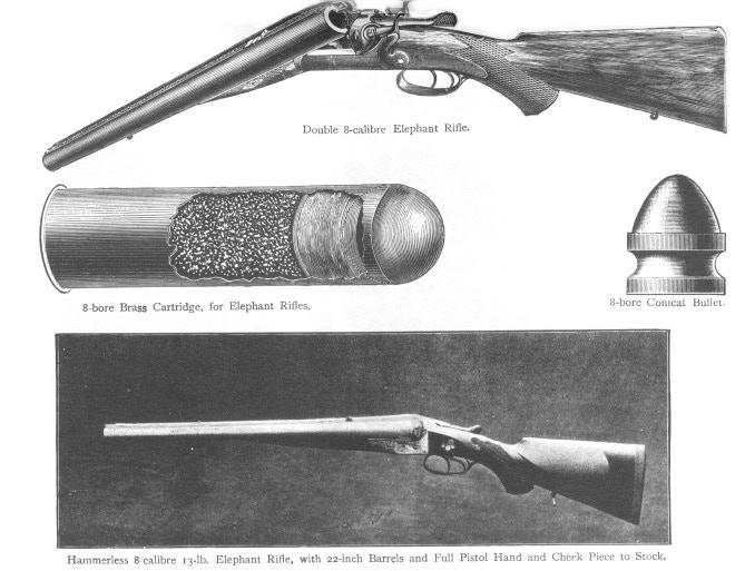 Eight-Bore Rifle for a Big Bang
