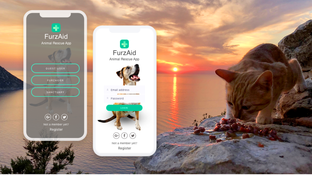 FurzAid: Animal Rescue App project video thumbnail