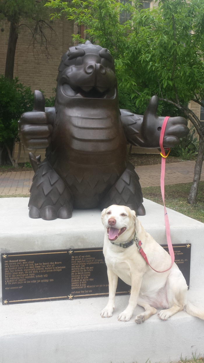 The world's only bronze Mazilla, in the middle of Austin TX, atop Mathews Elementary time capsule, available for weird selfies 24/7.