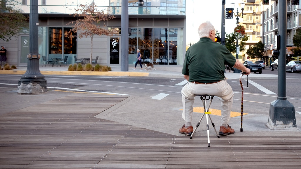 Interlude - An Innovative Travel Chair