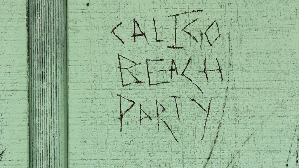 Pre-order Calico Beach Party's new album on colored vinyl project video thumbnail