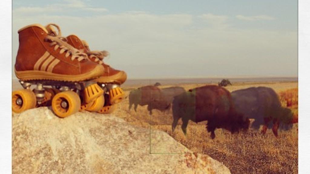 "Pre-Order Lyndy Butler's 4th Album, ""Buffalo Skater"" project video thumbnail"