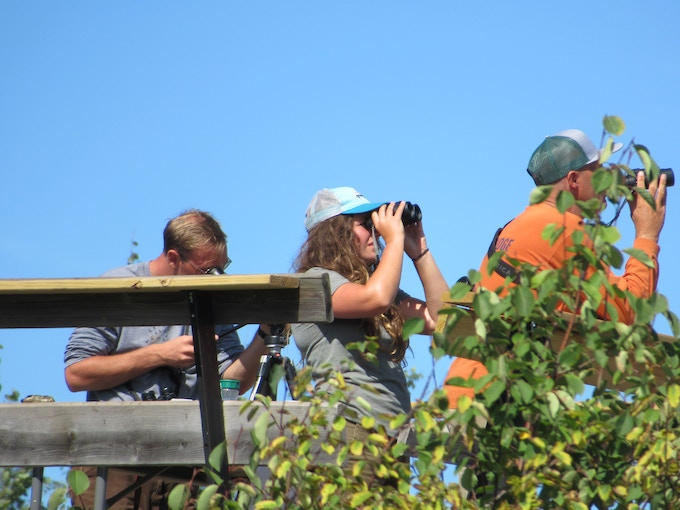 The A-Team! Counters Stephen Nelson, Hannah Toutonghi, and John Richardson check each other's counts on a kettle of broad-winged hawks out over Lake Superior.