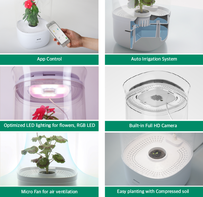 Bloomengine: The Perfect Home For Your Pet Plant by