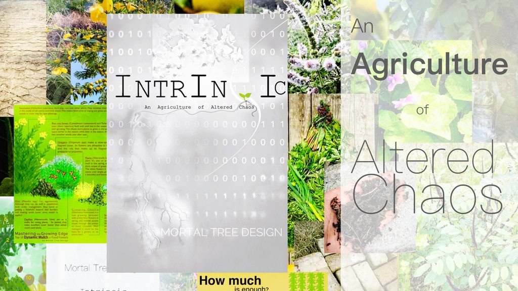 Project image for Intrinsic: An Agriculture of Altered Chaos