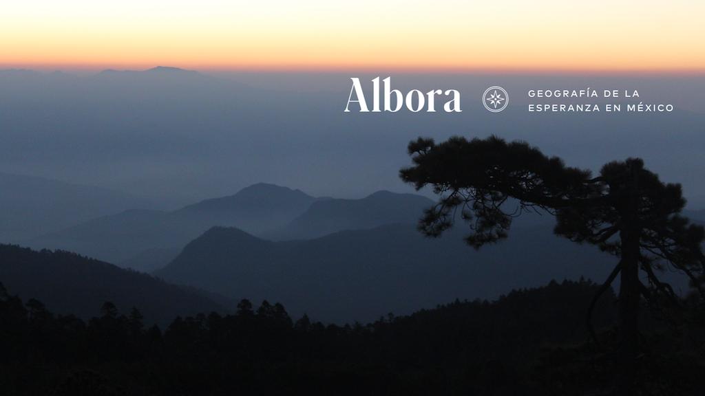Albora: Geografía de la Esperanza en México project video thumbnail