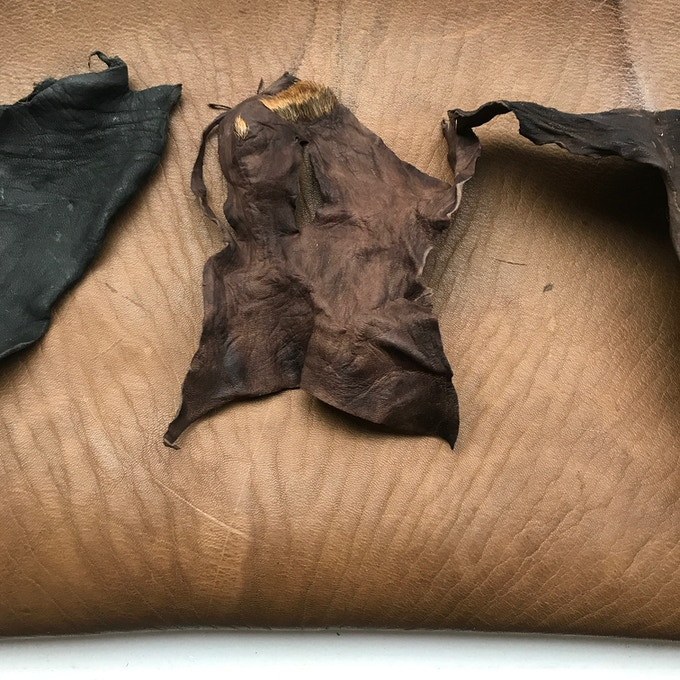 Example of our Oak Brown Iron and Black mineral leather straight from the barrel after drying