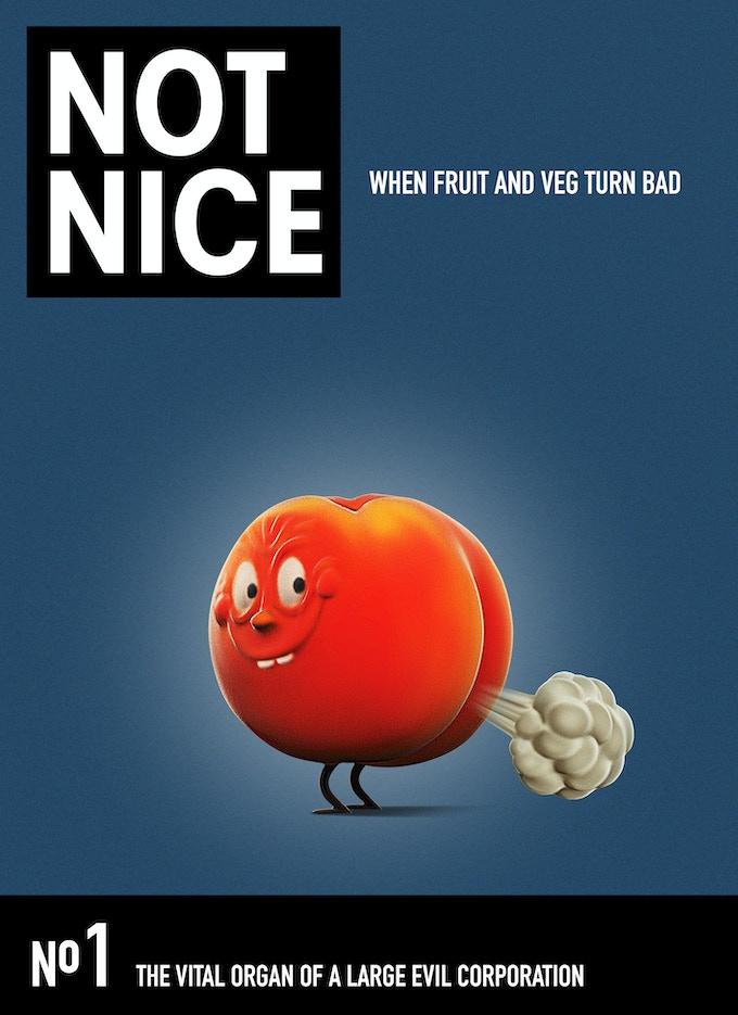 NOT NICE Magazine