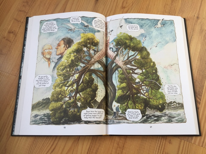 The book features 160 pages with 700 beautiful watercolor paintings.